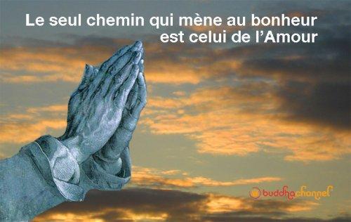Amour-e89c7.jpg