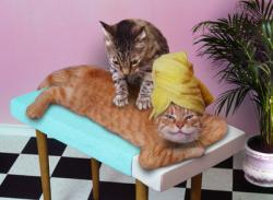 massage-comiic-2.jpg